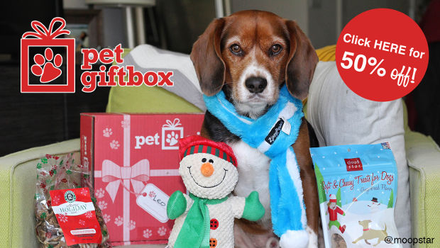 Pet Gift Box Is The Perfect Gift For The Pet or Pet Lover In Your Life