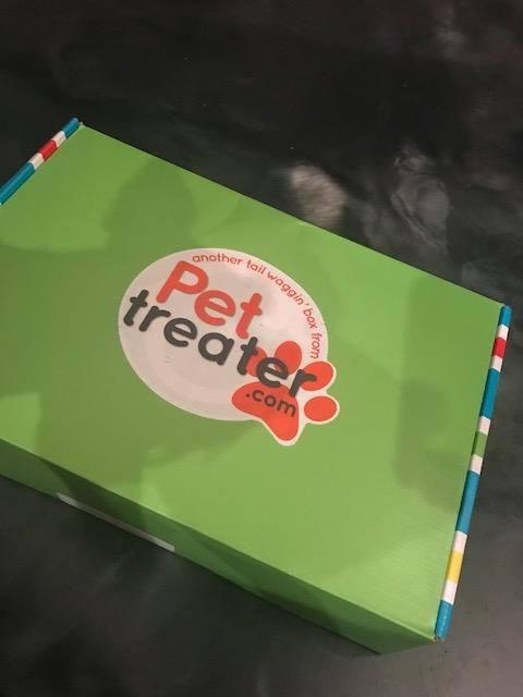 Review: Pet Treater Is The Perfect Subscription Box For Your Dog