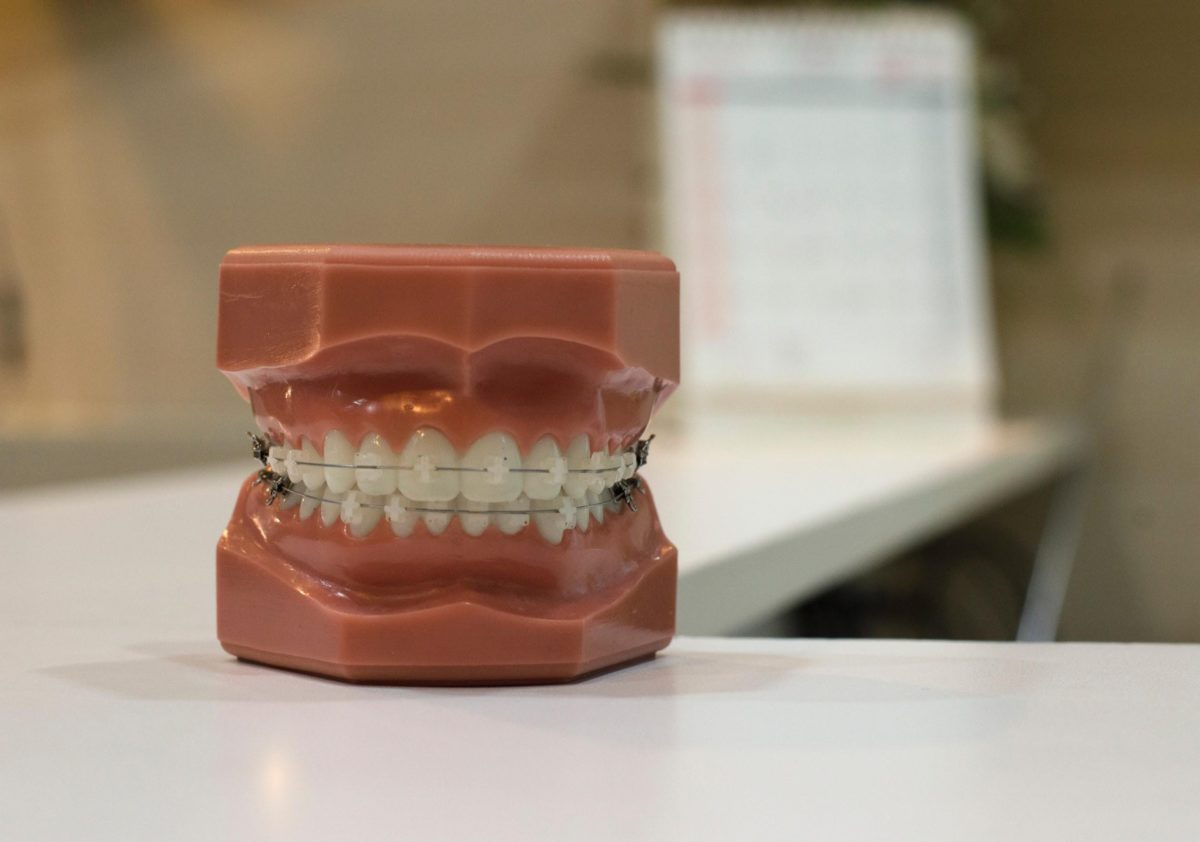Dental Plans for You and Your Family: How to Choose the Best One